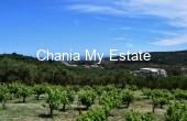 PLPOL00046, Plot for sale in Platanias Chania Crete